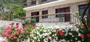 faralia hotel flowers view Faralya Fethiye