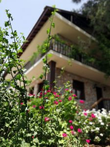 Faralia Hotel garden view Faralya Village Ölüdeniz Fethiye Turkey