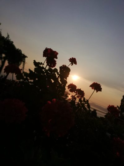 Faralia Hotel sunset view over mediterranean sea in Fethiye Turkey