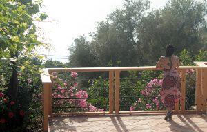 Seaview at Faralia hotel Ölüdeniz Fethiye