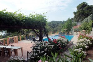 Faralia Hotel pool view with colorful flowers